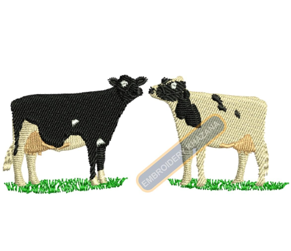 1433923279_Cows.jpg