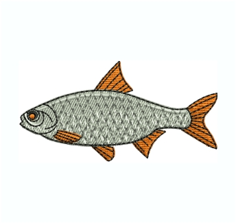 Roach Fish Embroidery Design
