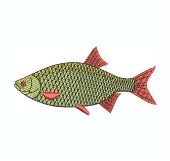 Rudd Fish Embroidery Design