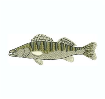 Zander Fish Embroidery Design